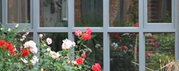 Hardwood windows 1